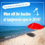 Opening Date of Beaches in Gangwon-do in 2019