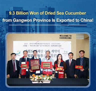 9.3_Billion_Won_of_Dried_Sea_Cucumber_from_Gangwon_Province_Is_Exported_to_China!.jpg